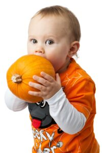 Small child eating a whole pumpkin