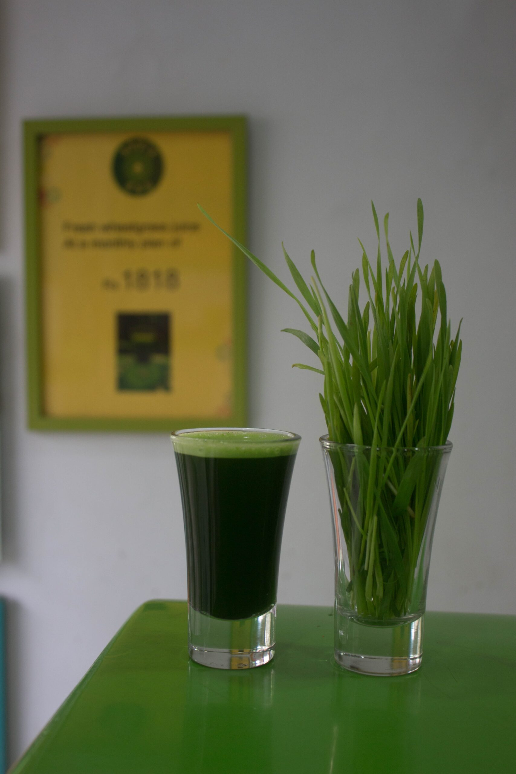 Glass of wheatgrass juice next to a glass of wheatgrass made in a masticating juicer