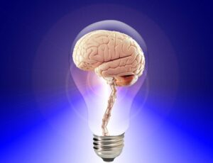 brain inside a light bulb representing the minds thinking