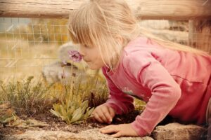 child using her senses to experience nature smelling a flower